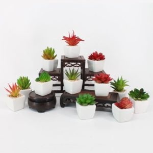 mini plantes artificielles