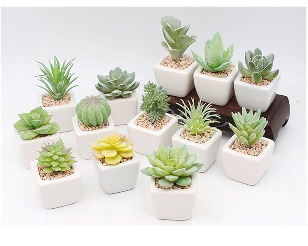 mini plantes artificielles deco